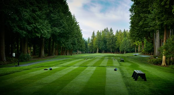 Golf Overview